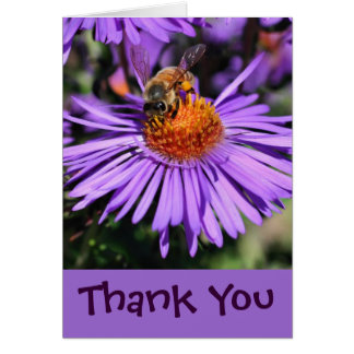 Bee On Purple Aster Flower Thank You Card