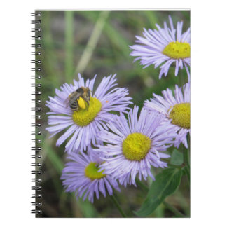 Bee on Purple Aster Notebook