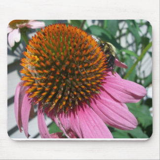 Bee on purple coneflower mouse pad