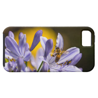 Bee on Purple Flowers iPhone5 Vibe Case iPhone 5 Case