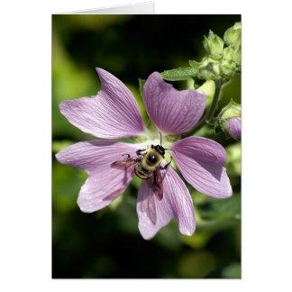 Bee on purple geranium  greeting card