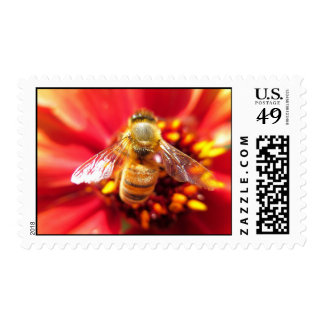 Bee on Red Flower Postage