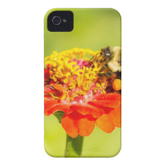 bee on red flower with pollen sacs iPhone 4 case