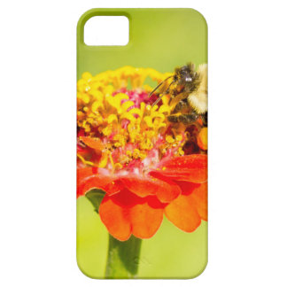 bee on red flower with pollen sacs iPhone SE/5/5s case