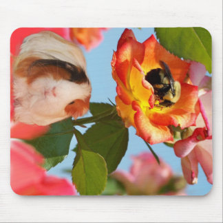 Bee On Rose with Guinea Pig Mouse Pad