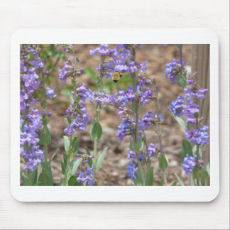 bee on sage mouse pad
