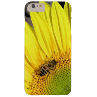 Bee On Sunflower Close Up Photograph Barely There iPhone 6 Plus Case