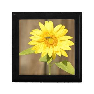 Bee on Sunflower Jewelry Box
