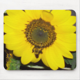 Bee on Sunflower Mouse Pad
