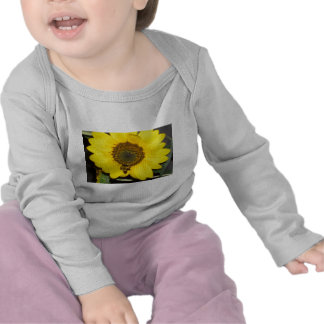 Bee on Sunflower T Shirts