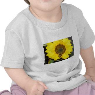 Bee on Sunflower Tee Shirt