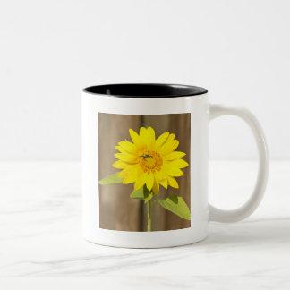 Bee on Sunflower Two-Tone Coffee Mug