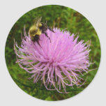 Bee on Thistle Flower Classic Round Sticker