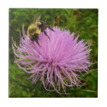 Bee on Thistle Flower Tile