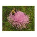 Bee on Thistle Flower Wood Print