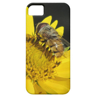 Bee on Yellow Flower iPhone 5 Case