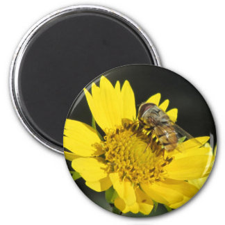 Bee on Yellow Flower Magnet