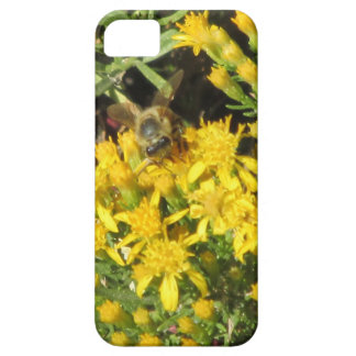 Bee on Yellow Flowers iPhone 5 Case