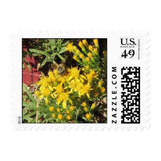 Bee on Yellow Flowers Postage