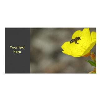 Bee Photo Card