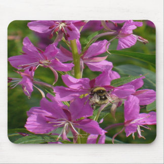 Bee Pollenating Fireweed Blossoms, Unalaska Island Mousepads