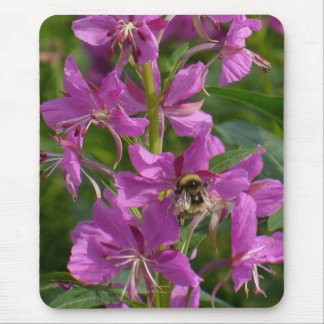 Bee Pollenating Fireweed Blossoms, Unalaska Island Mouse Pad