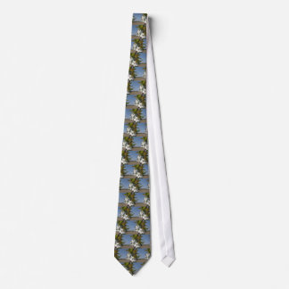 Bee pollinates a pear blossom in spring neck tie