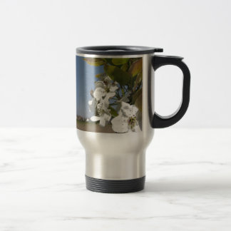 Bee pollinates a pear blossom in spring travel mug