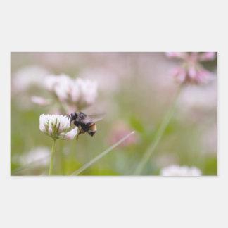 Bee Pollinating Clover Rectangular Sticker