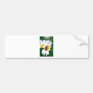 Bee pollinating flower bumper sticker