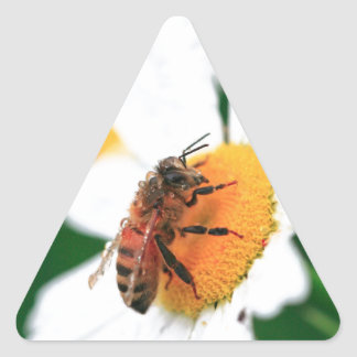 Bee pollinating flower triangle sticker