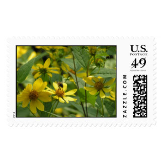 Bee Pollinating on a flower Postage Stamps