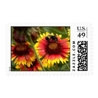 Bee Pollinating on a Red and Yellow Flower Postage Stamps