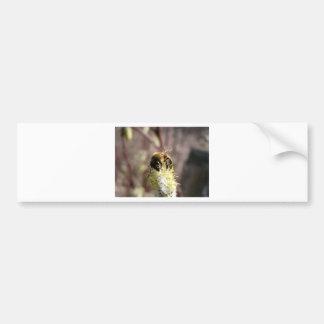 Bee Pollinator Bumper Sticker