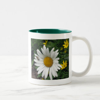 Bee Resting on shasta Daisy Two-Tone Coffee Mug