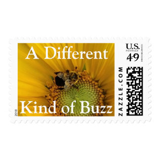 Bee Sunflower Different Kind of Buzz Postage Stamp