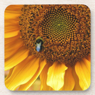 Bee Sunny Beverage Coaster
