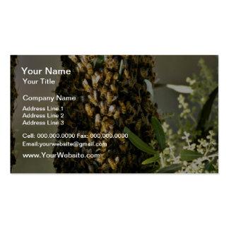 Bee swarm in tree Pink flowers Business Card