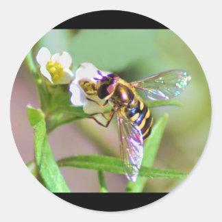 Bee Wings Stickers