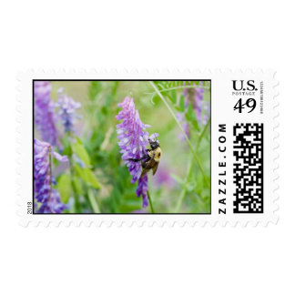bee with color postage