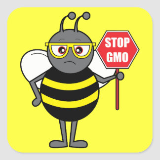 Bee with Stop Sign: GMO Square Sticker