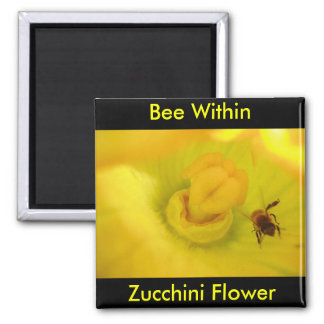 Bee Within Zucchini Flower 2 Inch Square Magnet