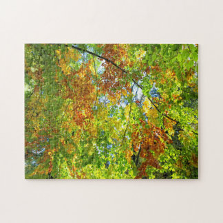 Beech Autumn Leaves. Puzzles