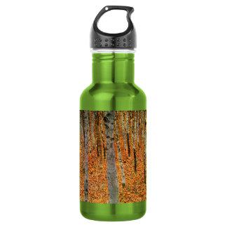 Beech Forest by Gustav Klimt Water Bottle