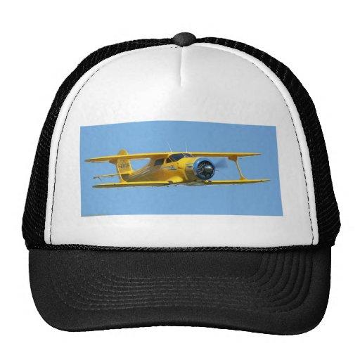 BEECH HATS