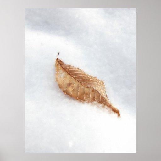 Beech Leaf In A Snow Drift Print