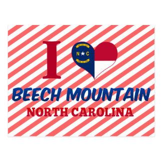 Beech Mountain, North Carolina Postcard