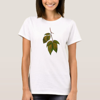 Beech Tree Leaves: Freehand Art: Nature T-Shirt