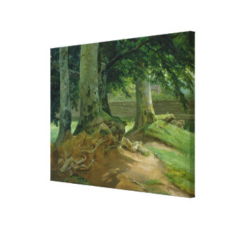 Beech Trees in Frederiksdal near Copenhagen Canvas Print