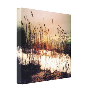 Beech Weed Photography Canvas Print